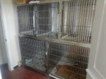 lyn-rand-stainless-cages